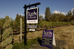 Troon_vineyard_2